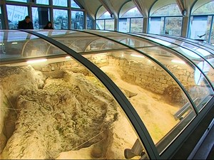 Die besondere Ausgrabungsstätte in Bilzingsleben