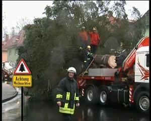 Rennsteig.TV: Weihnachtsbaum steht schon