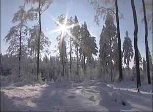 Südthüringer Regionalfernsehen: Winter am Rennsteig