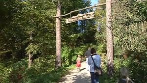 Nordthüringer Fernsehen: Bärenpark Worbis