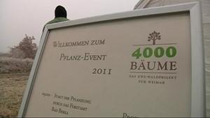 4000 Bäume