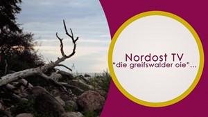 Nordost TV - Die Greifswalder Oie