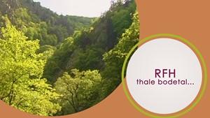 RFH - Thale Bodetal