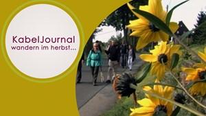 KabelJournal - Wandern im Herbst