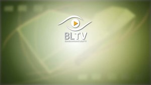 BLTV - movienews April 2013