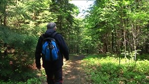 Der Kneippwanderweg Bad Berka