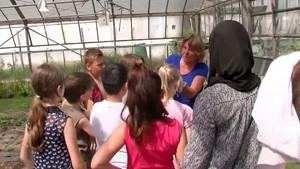 Deutschland Lokal - RheinMain TV - Grüne Soße