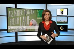 Deutschland Lokal Dezember 2014