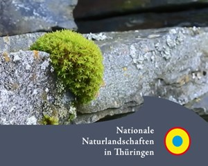 Naturpark Thüringer Schiefergebirge/Obere Saale