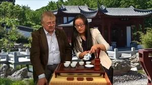 Eine chinesische Teezeremonie - Konfuzius TV