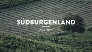 Südburgenland(Austria): Secret Wine - A Journey