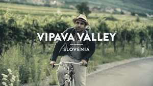 Vipava Valley (Slovenia): Secret Wine – A Journey