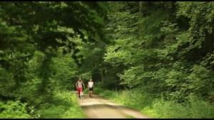Tag des Wanderns