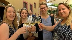 Weinbau in und um Frankfurt - RheinMainTV - Deutschland lokal Juni 2016