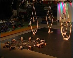 Zirkus Gaudimus