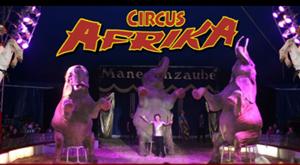 Der Zirkus