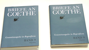 Briefe an Goethe