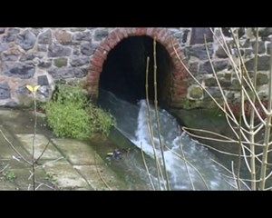 Altenburg.TV: Gewässernachbarschaft