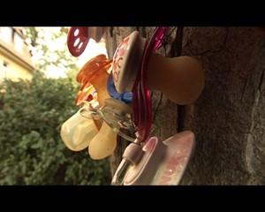Jena TV: Schnuller-Spenden-Baum