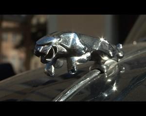 Ostthüringen TV: The Royal Automobile Club