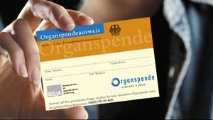 Juli 2012: Kritische Medien - Neues Organspendegesetz ab 2012