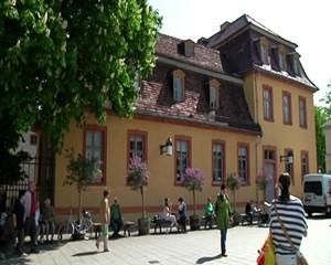 Das Wittumspalais