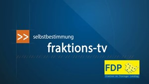 Fraktions - TV vom 17.06.2013
