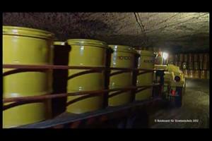 Ein Atomendlager in Deutschland