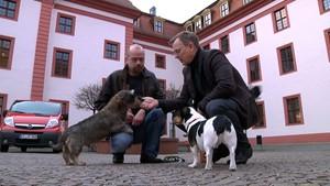 Thüringer Politik TV: Rubrik Ramelow & Co. die ersten 100 Tage