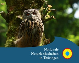 Naturpark Südharz - Wo der Harz am südlichsten ist …