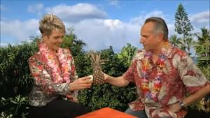 Hawaiianisches Frühstücksfernsehen mit Prof. Micky Remann und Judith Noll