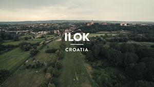 Ilok (Croatia): Secret Wine - A Journay