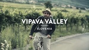 Vipava Valley (Slovenia): Secret Wine – A Journey