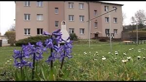 Zuflucht in der Grabenstraße - AltenburgTV - Thüringen.TV