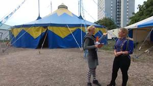 Ein Zirkus in Erfurt ist das wieder