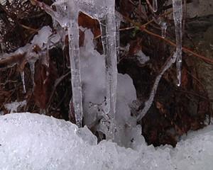 Winter-Bilder