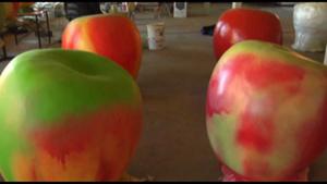 Apoldaer Äpfel