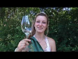 Weinfest Bad Sulza 2010